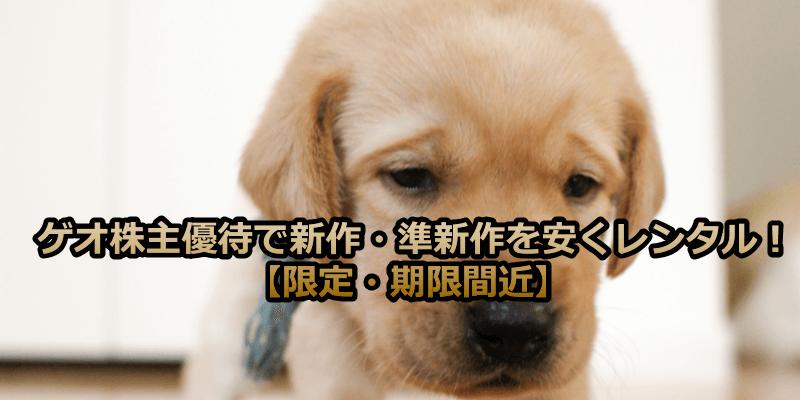 ゲオ株主優待で新作・準新作を安くレンタル!【限定・期限間近】