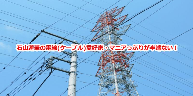 石山蓮華の電線(ケーブル)愛好家マニアっぷりが半端ない!/有吉反省会